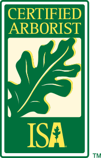 Certified Arborist by the International Society of Arboriculture